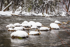 Merced River in Winter 1 (lycheng99) Tags: winter snow mercedriver ice cold yosemite yosemitenationalpark yosemitevalley river water flow trees landscape nature travel explore