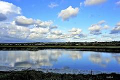 Feliz Martes! (ZAP.M) Tags: nwn martesdenubes nubes cielo marisma paisaje naturaleza nature natura zapm mpazdelcerro reflejos flickr sony sonyevil sonyalfa100