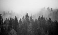 Hills of steam (Carl Terlak) Tags: sony emount uv ilce nex6 sigma hills