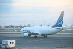 C-FTVI Transat B737-800 (Vernon Harvey) Tags: toronto pearson yyz cftvi boeing 737 transat transavia