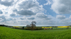 Nathanby Farmland (cabalvoid) Tags: lincoln landscape tree nature sky farm panorama cloud wildlife