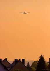 Gigante vindo de Petrolina lá atrás! (PauloHenrique Pereira) Tags: boeing 747 748 sunset airplane aircraft plane