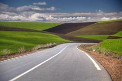 The Road to Spring (hapulcu) Tags: maghreb maroc marocco marokko marruecos meknes morocco hiver invierno