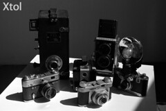DevTest_Xtol (Mark Dalzell) Tags: black white developing test bw nikon f3 f3hp kodak tmax tmax400 film xtol sprint sprintsystems d76 rodinal hc110 diafine caffenol stand standdevelop standdevelopment fpp filmphotographyproject