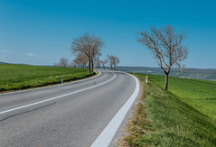 Curved country road in South Moravian region