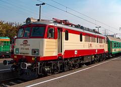 EP07-1005 (Mariusz Sychowicz) Tags: pkp polskakolej hcp ep07 warsaw warszawa madeinpoland polishtrain train eu07 siódemka eu07ipokrewne lokomowtywa railway railwayphotography