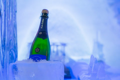 On ice (Janne Räkköläinen) Tags: champagne onice ice bottle cold alcohol winter winterwonderland icecastle shamppanja lappi lappland finland jäälinna ylläs icy canon6d canonphotography canon canonphotographing ef24105l blue bluemoment icebar bar amateur amateurphotography amateurphotographing snow snowwillage 2019 february lainio kylmä
