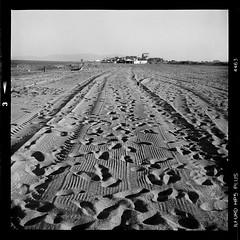 Traces (vincent-photo) Tags: analog blackwhite caffenol caffenolch film hp5 ilford mediumformat square silvergelatin tlr vintage 6x6 yashica yashica12 yashicaffenol