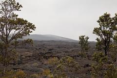 Mauna Ulu, Kilauea, Hawaii Volcanoes National Park, Hawaii (Roger Gerbig) Tags: maunaulu hawaiivolcanoesnationalpark kilauea volcano hawaii bigisland island rogergerbig canoneos5dmarkii canonef24105mmf4lisusm 3312
