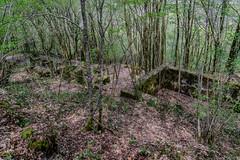 73-Vestiges aztèques ou limousinca ? (Alain COSTE) Tags: 2019 forêt hautevienne lavarache limousin nikon ocb printemps randonnée eymoutiers france