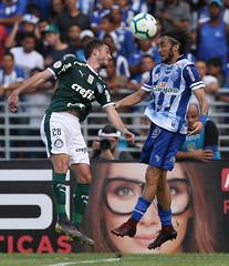 CSA x Palmeiras (01/05/2019) (sepalmeiras) Tags: csa palmeiras reipelé sep sériea campeonatobrasileiro csaxpalmeiras01052019 hyoran
