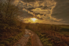 Puddled road (xDigital-Dreamsx) Tags: sunset road water puddle dusk landscape trees scotland clouds