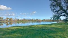 Wetlands (randyherring) Tags: ca california centralcaliforniavalley cosumnesriverpreserve elkgrove afternoon aquaticbird nature outdoor recreational waterfowl wetlands
