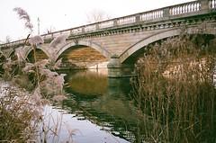 000141380002 (kelcey a.f.) Tags: contax t2 color nature bridge trees lake london uk hyde park kodak portra 800 35mm film