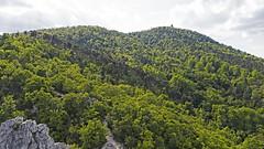 Tündér-szikla (QuetzalLife) Tags: budapest buda drone dji dronephoto mycity goodweather nature greeen rock hill mountain lookouttower
