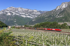 ÖBB 1293 004 + xxx - Ala (FabioMiottoPhoto.com) Tags: öbb österreich bundes bahnen 1293 rh1293 vectron ala avio vallagarina brennero brenner brennerbahn zug guterzuz treno ferrovia train railway