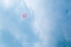 wish balloon (MichalKondrat) Tags: szczecin rodzina dąbie zachodniopomorskie wiosna urodziny nikond300s impreza nikkor35mmf18 ludzie polska nadwodą kwiecień 18 tata roczek uroczystość dzieci 27 bliźniaczki mama 2019 dziewczynki balony hania idalia liliana michał paulina