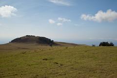 Kohala, Hawaii (Big Island) (Roger Gerbig) Tags: kohala hawaii bigisland island rogergerbig canoneos5dmarkii canonef24105mmf4lisusm 3238