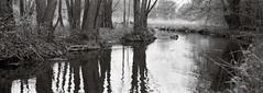 By the river (Geir Bakken) Tags: fomapan fomadon fomapan200 mamiya mamiyarb67 panorama panoramic mediumformat film filmisnotdead filmphotography filmcamera 135 35mmfilm ilovefilm analog analogue analogphotography blackandwhite norway landscape