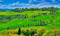 strada (lotti roberto) Tags: siena italia italy green cipressi sky tuscany toscana path springtime spring nature clouds cloud tranquillity fav25