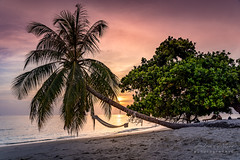 A7302782_s (AndiP66) Tags: sonnenuntergang sunset wolken clouds sonne sun evening abend strand beach bandos nordmaléatoll northmaleatoll kaafu atoll insel island malediven maldives indischerozean indianocean märz march 2019 sony sonyalpha 7markiii 7iii 7m3 a7iii alpha ilce7m3 sonyfe24105mmf4goss sony24105mm 24105mm emount sel24105g andreaspeters