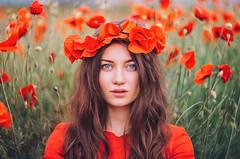 Poppies (hobopeeba) Tags: poppies girl portrait