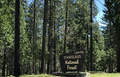 #RoadTrip, on our way to #yosemite (Σταύρος) Tags: stanislaus stanislausnationalforrest stanislausnationalpark lateapril park nationalforrest fauna flora green trees forrest roadtrip lastweekend yosemite tuolumne april27 kalifornien norcal cali californië kalifornia καλιφόρνια カリフォルニア州 캘리포니아 주 californie california northerncalifornia カリフォルニア 加州 калифорния แคลิฟอร์เนีย كاليفورنيا