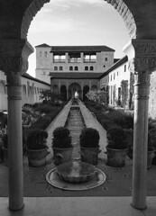 190428_Granada_021 (Stefano Sbaccanti) Tags: stefanosbaccanti spain 2019 leicam7 andalucia analogue analogico analogicait argentique tradiciones españa