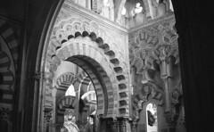 190427_Cordoba_013 (Stefano Sbaccanti) Tags: stefanosbaccanti spain 2019 leicam7 andalucia analogue analogico analogicait argentique tradiciones españa