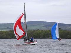 on guy and sheet (antrimboatclub) Tags: antrimboatclub boat sail sailing ireland sixmilewater loughneagh antrimbay antrim