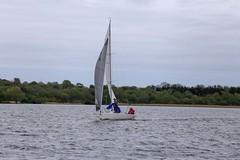 Alfie bow man (antrimboatclub) Tags: antrimboatclub boat sail sailing ireland sixmilewater loughneagh antrimbay antrim