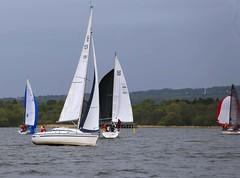 Dont ask me (antrimboatclub) Tags: antrimboatclub boat sail sailing ireland sixmilewater loughneagh antrimbay antrim