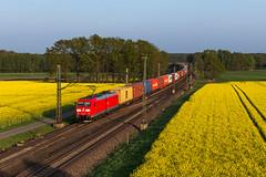 DB 185 070 - Linsburg (Pau Sommerfeld Acebrón) Tags: