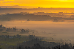 Misty lands (Artur Tomaz Photography) Tags: a25 caramulo green nascerdosol fog house nature nevoeiro portugal sol sunrise tellow tree ventosa mist
