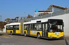 PYM-564 (Az autóbuszok képtára) Tags: man mana23 manbusz manbus busz bus pym564 autóbuszállomás tatabánya tbusz hungary
