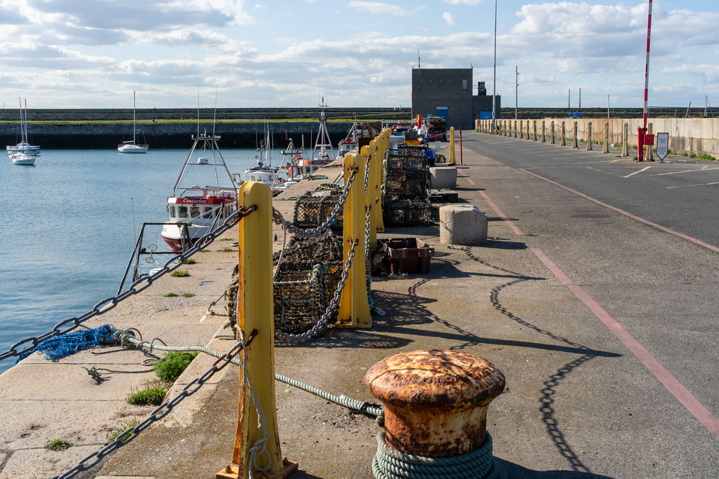 TRADERS' WHARF AREA [WEST PIER DUN LAOGHAIRE HARBOUR]-152226