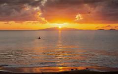 dawn kayak (Richard Meares) Tags: dawn auckland murrays bay silhouette rangitoto fishing beach sea pacific volcano waitemata reflection sand ocean sun sky clouds gull seagull seagulls