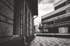 HSD - Hochschule Düsseldorf (Diggoar) Tags: hsd hochschuledüsseldorf fujifilm xpro2 xf23mmf2 blackandwhite bw architecture city cityscape school