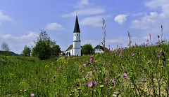 Spring around the village (Kat-i) Tags: natur nature kirche church outside frühling spring wiese meadow blumen flowers himmel sky bäume trees nikon1v1 kati katharina 2019 niederbayern lowerbavaria deutschland germany