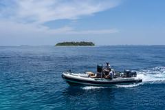 A7303780_s (AndiP66) Tags: bandos nordmaléatoll northmaleatoll kaafu atoll insel island malediven maldives indischerozean indianocean märz march 2019 sony sonyalpha 7markiii 7iii 7m3 a7iii alpha ilce7m3 sonyfe24105mmf4goss sony24105mm 24105mm emount sel24105g andreaspeters