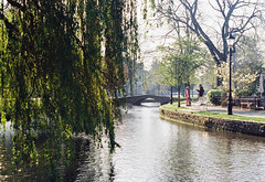 Bourton-on-the-water (joshdgeorge7) Tags: bourton on the water cheltenham gloucestershire bridge village britain uk travel spring summer kodak 250d vision 3 pentax mx 50mm f14 slr analogue processing develop trees willow life morning