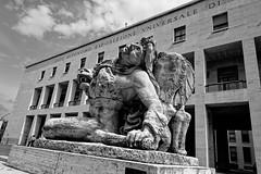 Rime : Quartier EUR Le lion et la proie (Paolo Pizzimenti) Tags: rome eur lion expo barbare nouveaux paolo italie olympus zuiko penf 12mm f2 film pellicule argentique doisneau