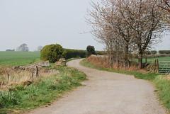 Winding Lane (Halliwell_Michael ## Offline mostlyl ##) Tags: flockton thirdagegroup huddersfield westyorkshire nikond40x 2019 landscapes hedgerows trees farmland