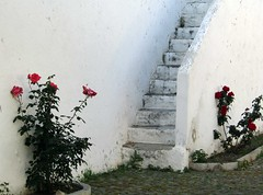 a staircase to heaven (lualba) Tags: treppe staircase stufen stairs rosen roses white weiss rot red green grün nature natur blüten blossoms alentejo portugal