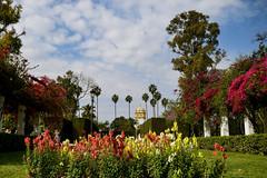 Floral corner ... (Raquel Borrrero) Tags: park parquedemarialuisa marialuisapark palmeras pabellóndelarepúblicaargentina flores flower sevilla españa primavera spring
