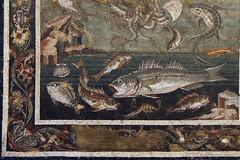 Marine Fauna (kate223332) Tags: pompeii mosaic museum archeology napoli italy casadelfauno houseofthefaun romanmosaic