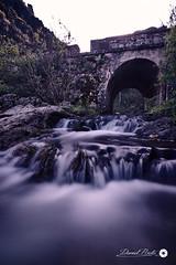 Bridge (Daniprial) Tags: bridge water nd nd100 nikon nikond7200 nikonista d7200 tokina tokina1116 1116 pic