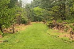 Trail to the farm