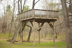 Overnight camp tree house