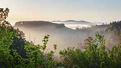 Somewhere off Skyline (JBernadez) Tags: skyline sanmateo northern california landscape photograhy nature hiking fog mountains trees hills sunset spring pacific coast canon ef2470f28liiusm 169